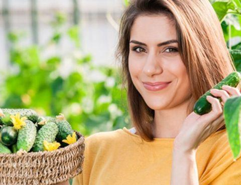 Tips Jaga Kesehatan Tubuh Agar Tidak Mudah Sakit