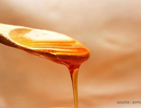 Manfaat Madu Bisa Bantu Atasi Sakit Maag - Campur madu dengan air hangat, lalu minum setiap hari untuk mengatasi sakit maag. Seperti yang dikutip dari laman Livestrong peneliti menilai
