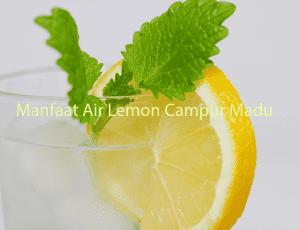 Manfaat Air Lemon Campur Madu