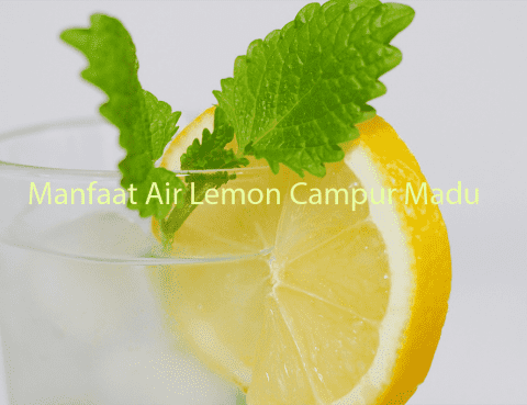 Manfaat Air Lemon Campur Madu
